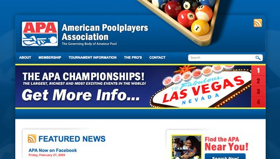 APA and CPA Pool Players web design site