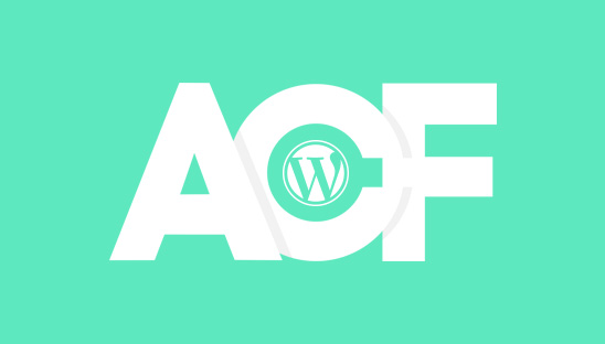 PART 2: How to Display the Advanced Custom Fields (ACF) for your Custom Post Type in the WordPress Theme Template File