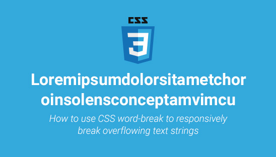 How to use CSS word-break to Responsively Break Overflowing Text Strings