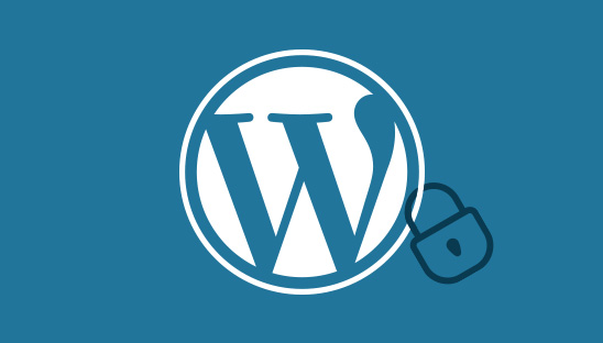 How to completely remove the WordPress version number from displaying to improve security